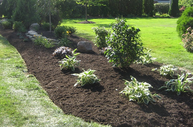 Landscaping guelph landscapers kings ops property for Soil king compost